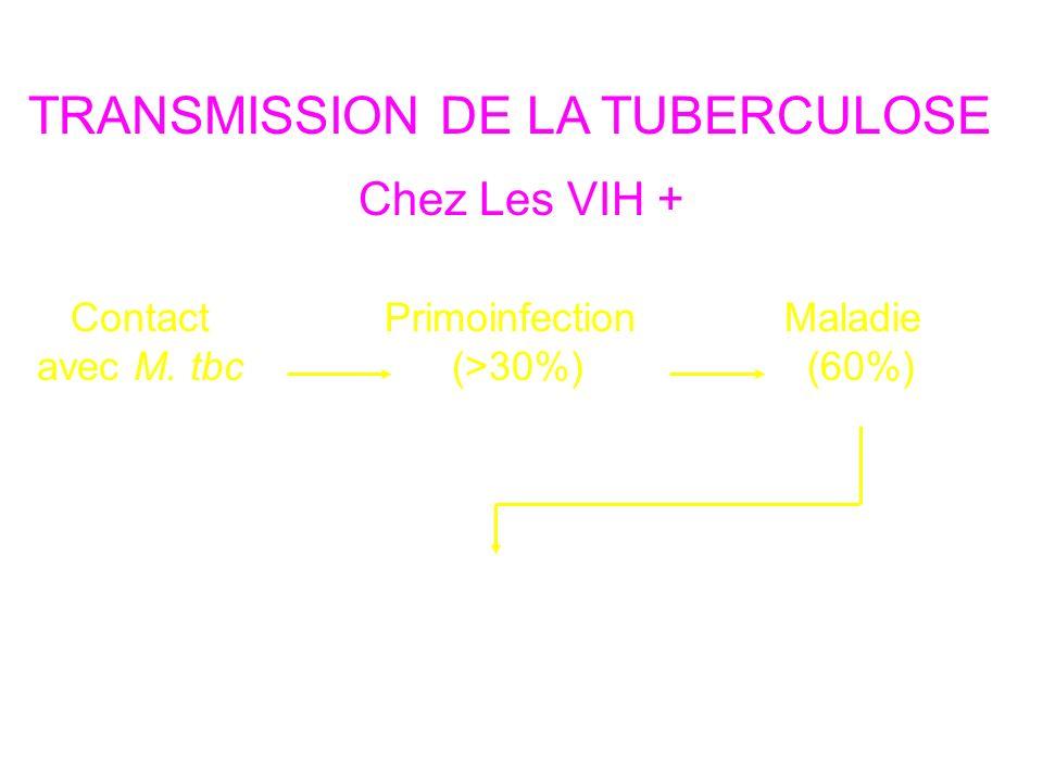 TRANSMISSION DE LA TUBERCULOSE