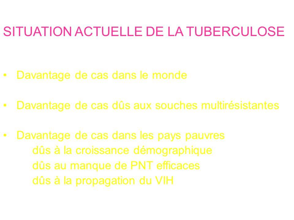 SITUATION ACTUELLE DE LA TUBERCULOSE En l'An 2006