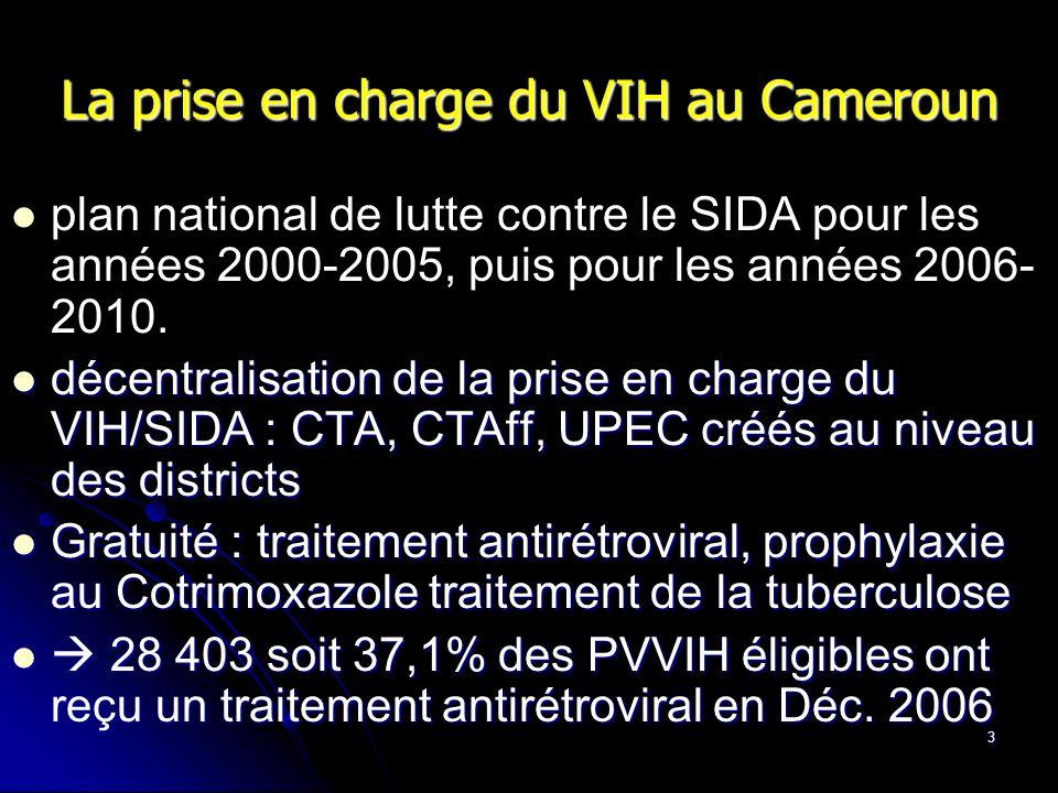 La prise en charge du VIH au Cameroun