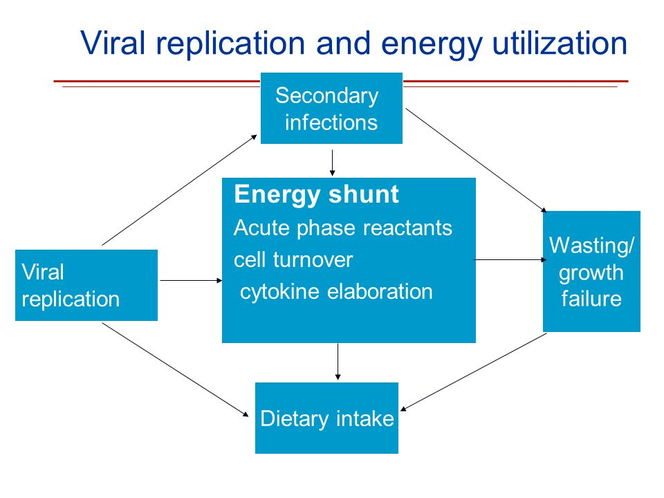 Viral replication and energy utilization