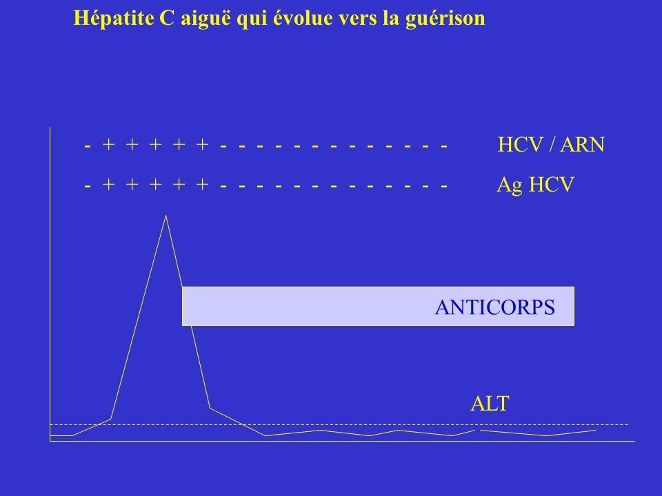 Hépatite C aiguë qui évolue vers la guérison