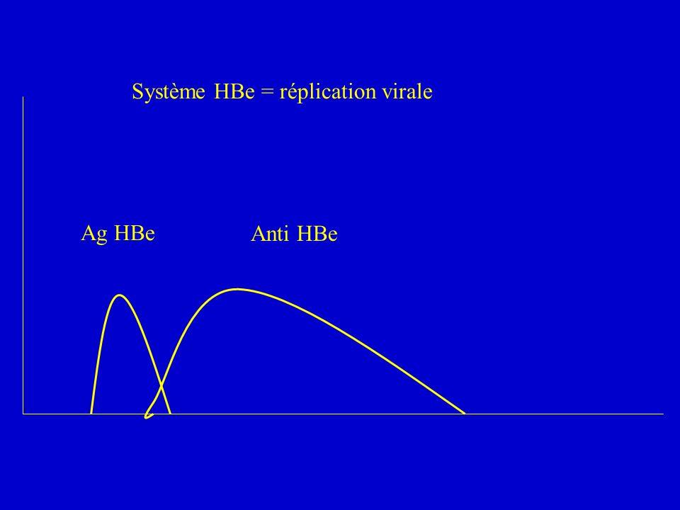 Système HBe = réplication virale