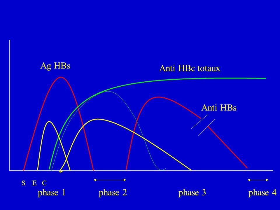 Ag HBs Anti HBc totaux. Anti HBs. S E C.