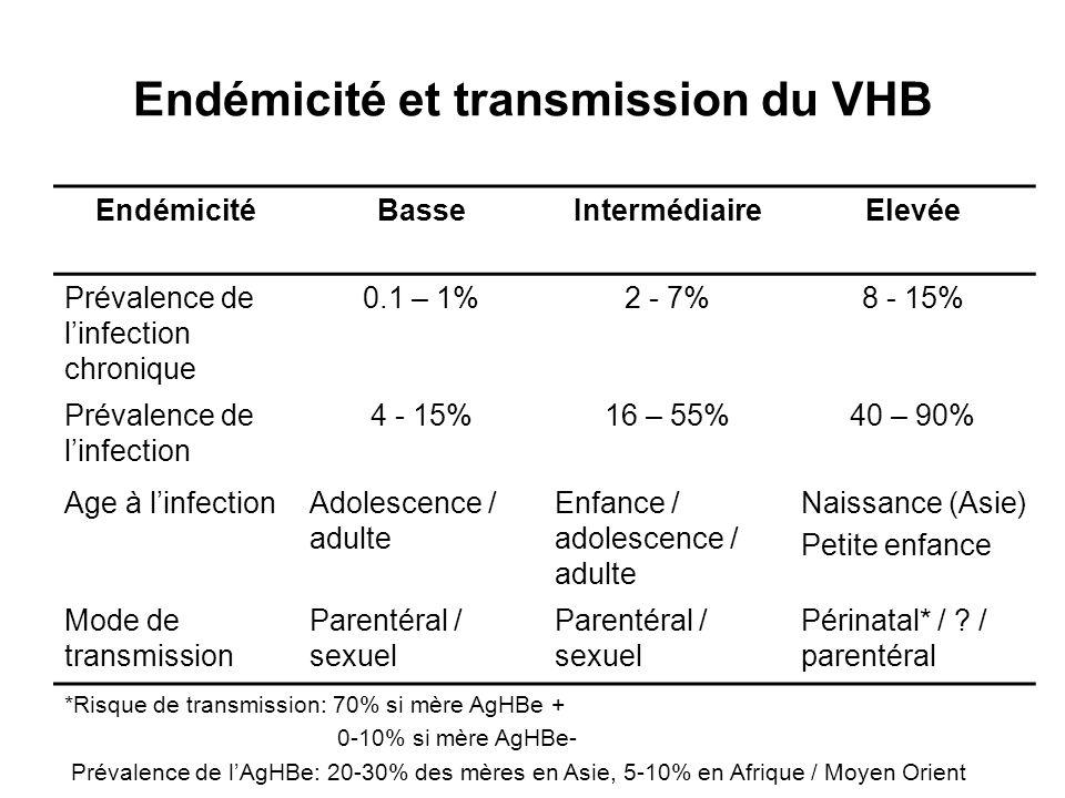 Endémicité et transmission du VHB