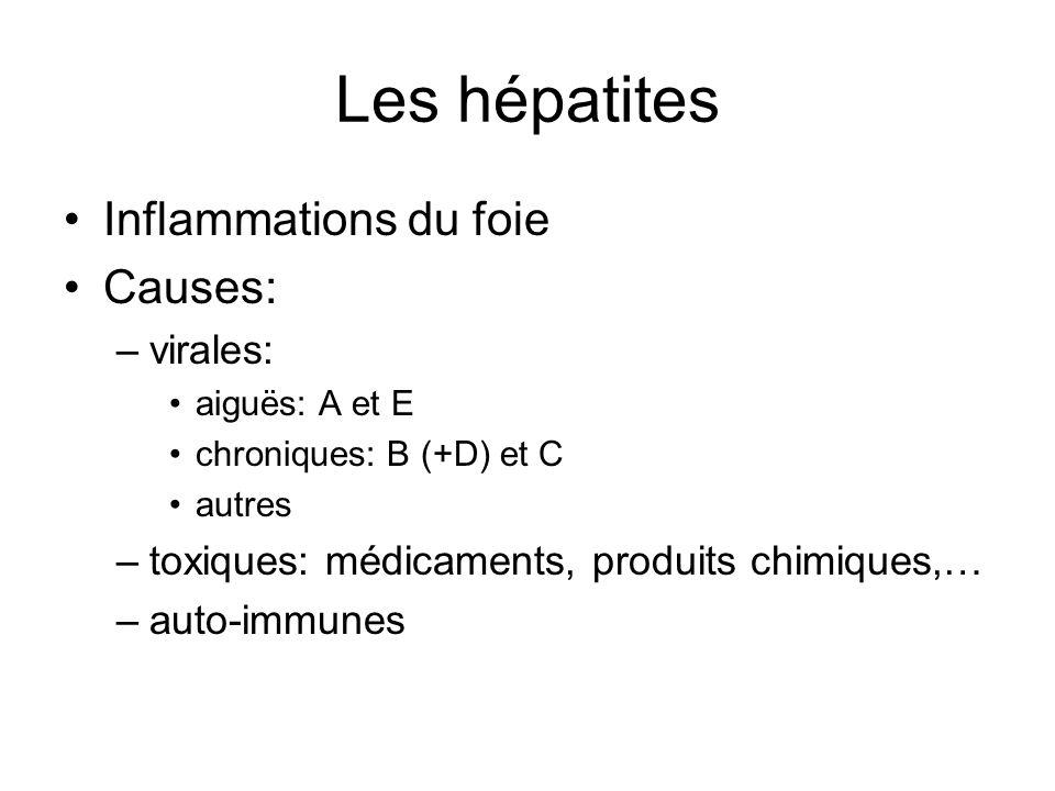 Les hépatites Inflammations du foie Causes: virales: