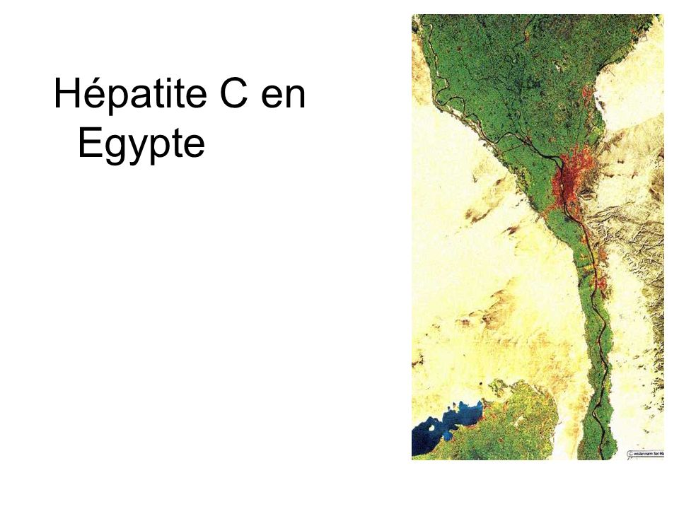 Hépatite C en Egypte Cairo, Lower and Middle Egypt from Space