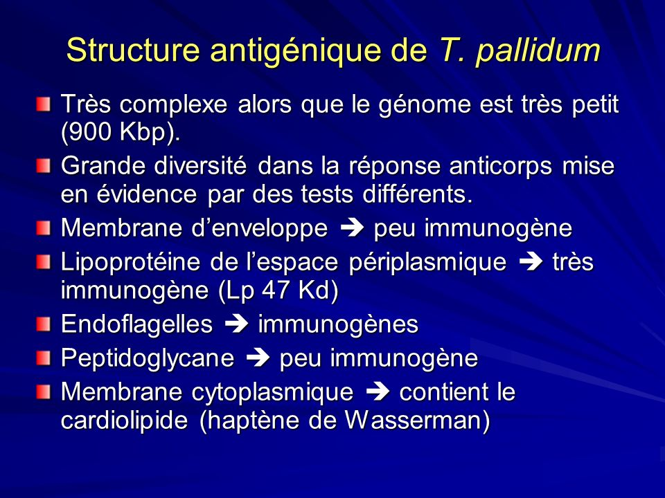 Structure antigénique de T. pallidum