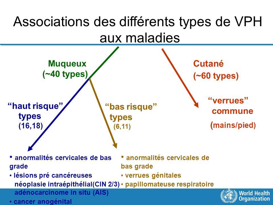 Associations des différents types de VPH