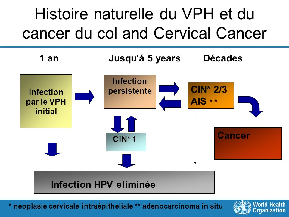 Histoire naturelle du VPH et du cancer du col and Cervical Cancer