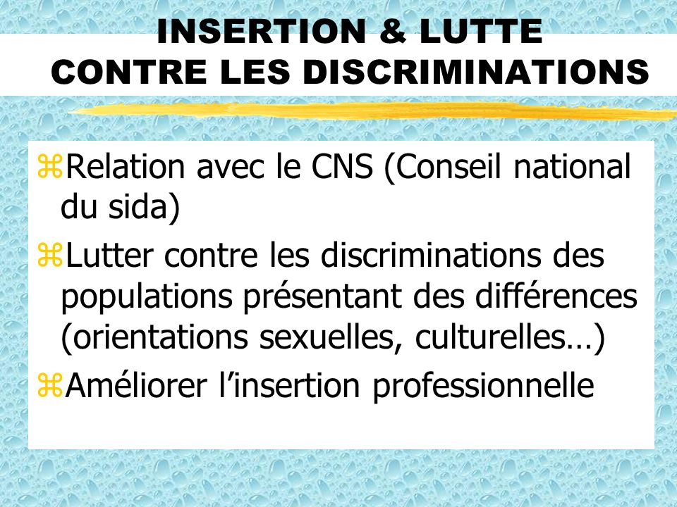 INSERTION & LUTTE CONTRE LES DISCRIMINATIONS