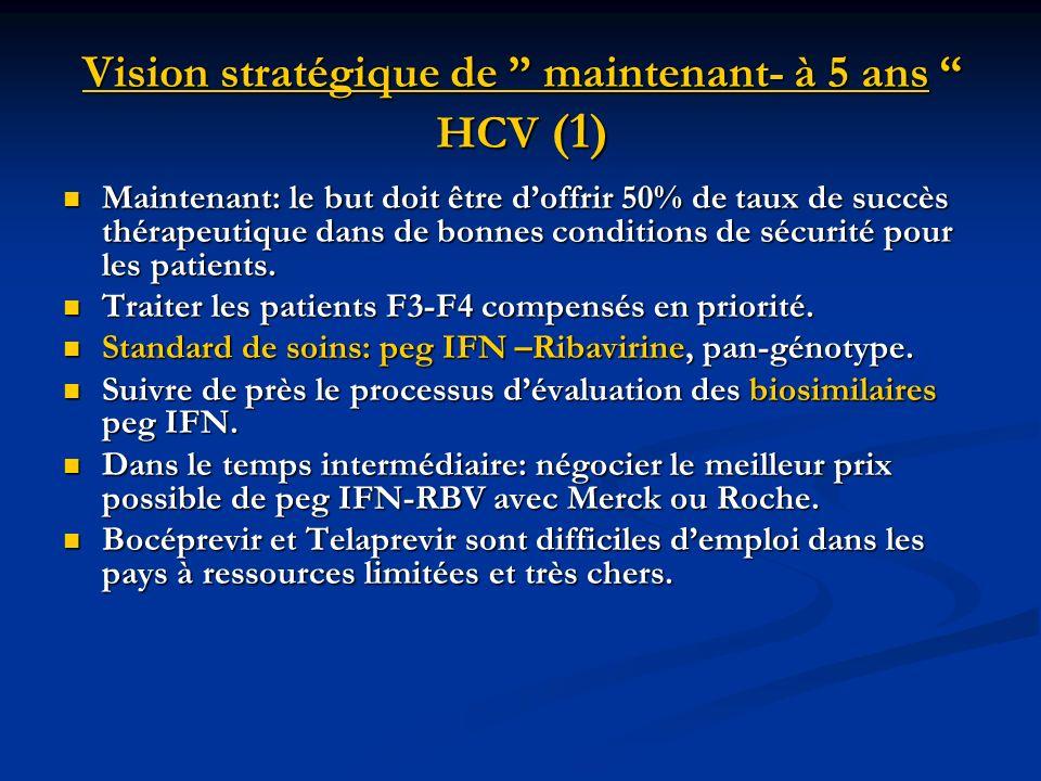 Vision stratégique de maintenant- à 5 ans HCV (1)