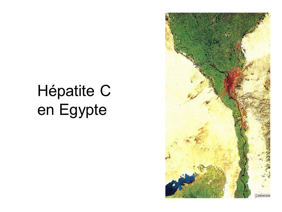 Hépatite C en Egypte