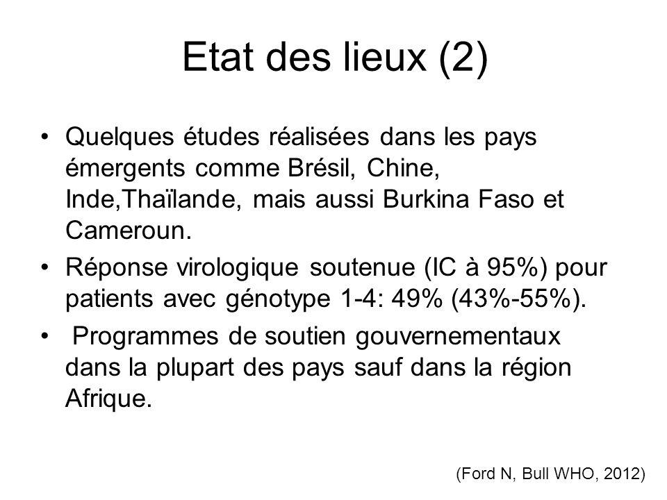 Etat des lieux (2) Quelques études réalisées dans les pays émergents comme Brésil, Chine, Inde,Thaïlande, mais aussi Burkina Faso et Cameroun.