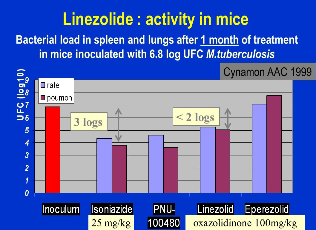 Linezolide : activity in mice