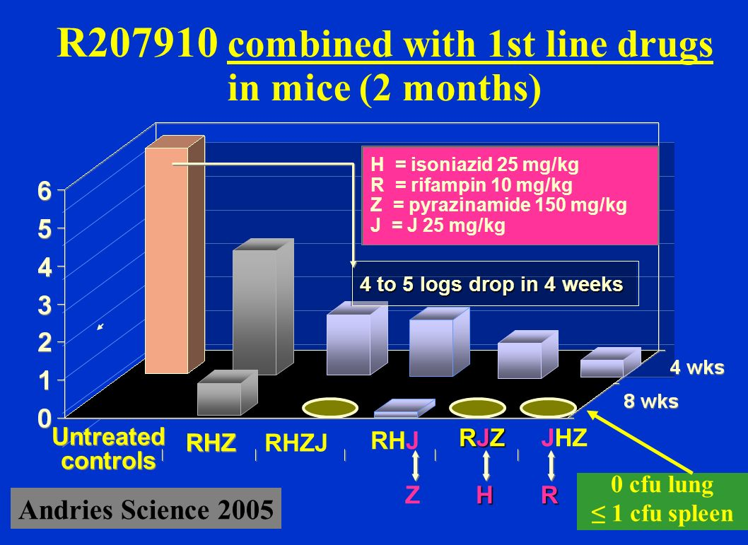 R combined with 1st line drugs in mice (2 months)