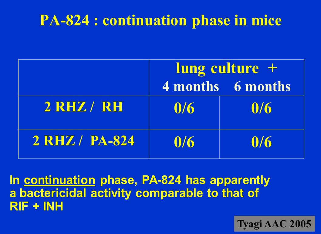 PA-824 : continuation phase in mice