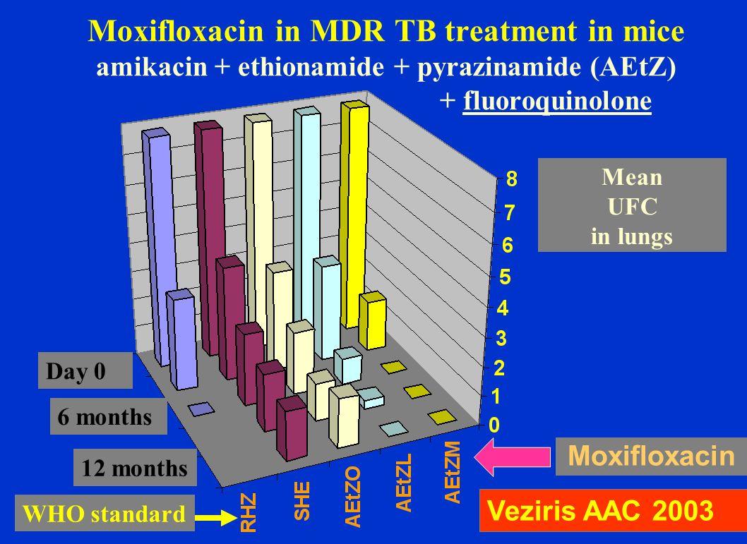 Moxifloxacin in MDR TB treatment in mice amikacin + ethionamide + pyrazinamide (AEtZ) + fluoroquinolone