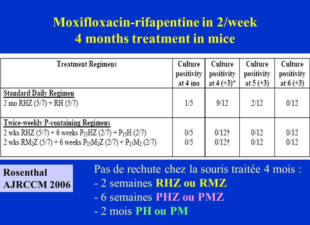 Moxifloxacin-rifapentine in 2/week 4 months treatment in mice