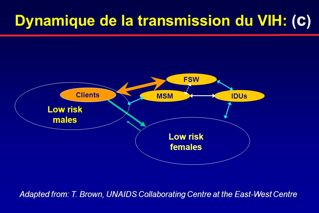 Dynamique de la transmission du VIH: (c)