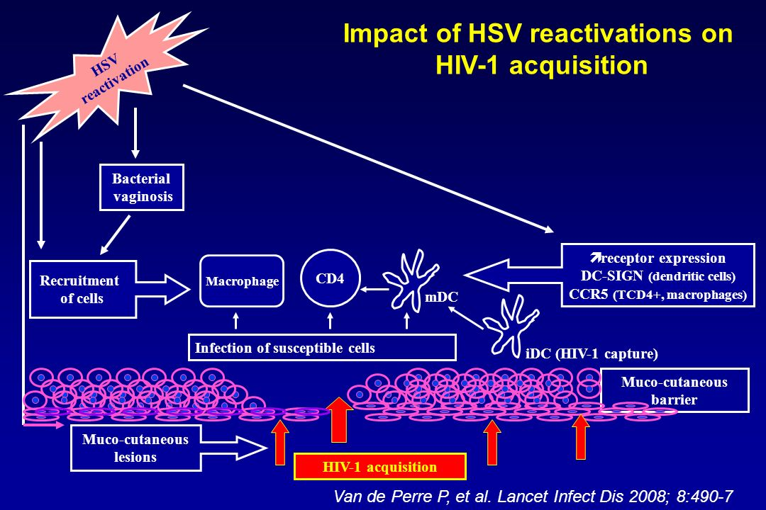 Impact of HSV reactivations on HIV-1 acquisition
