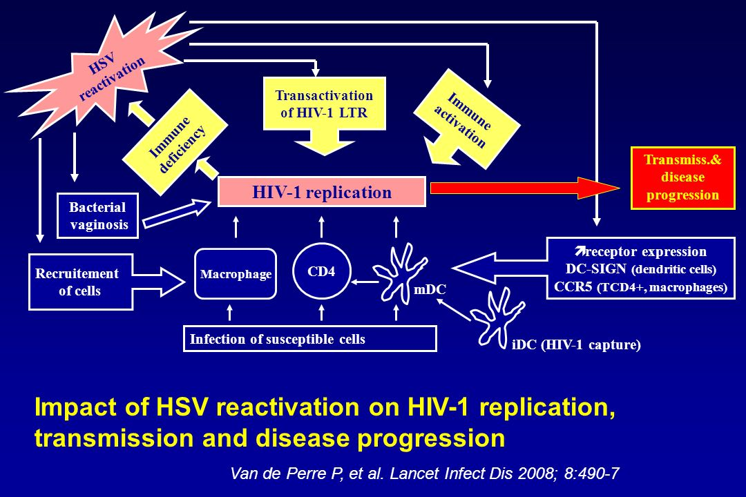 Impact of HSV reactivation on HIV-1 replication,
