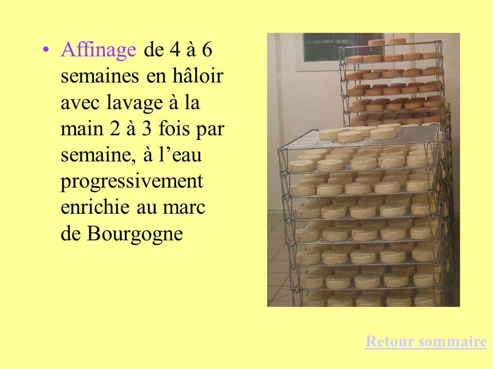 Affinage de 4 à 6 semaines en hâloir avec lavage à la main 2 à 3 fois par semaine, à l'eau progressivement enrichie au marc de Bourgogne