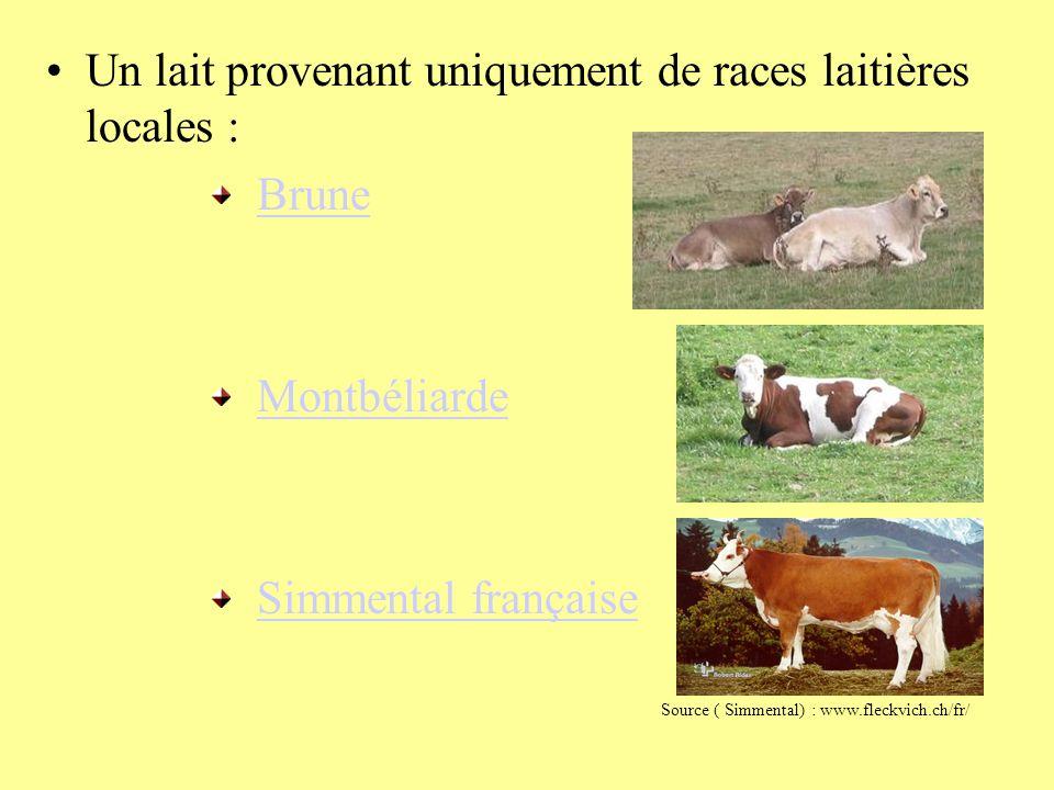 Un lait provenant uniquement de races laitières locales : Brune