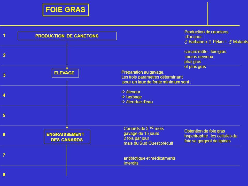 PRODUCTION DE CANETONS
