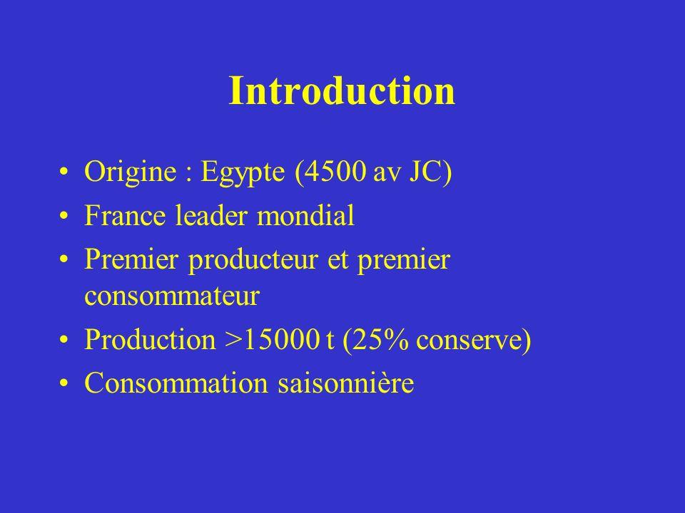 Introduction Origine : Egypte (4500 av JC) France leader mondial