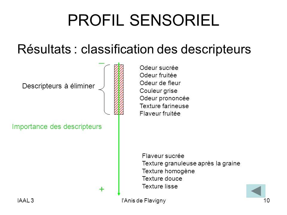 PROFIL SENSORIEL Résultats : classification des descripteurs _ +