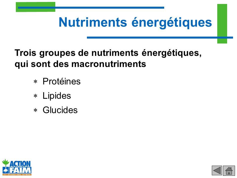Nutriments énergétiques