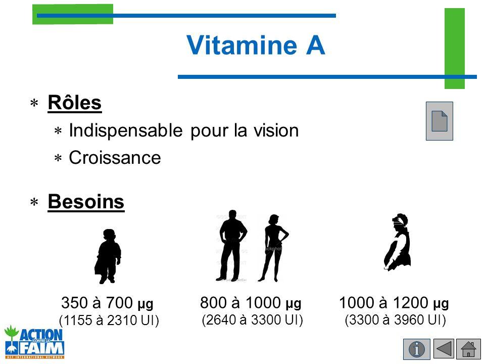 Vitamine A Rôles Besoins Indispensable pour la vision Croissance
