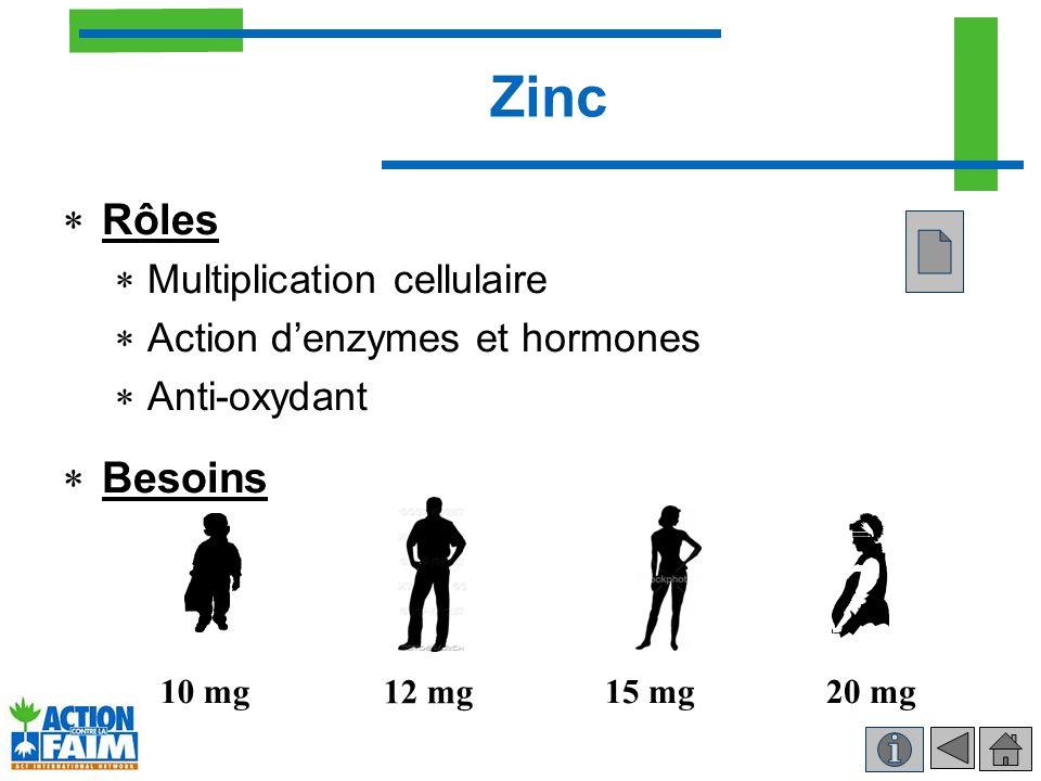 Zinc Rôles Besoins Multiplication cellulaire