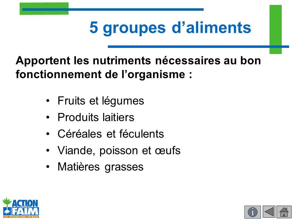 5 groupes d'aliments Apportent les nutriments nécessaires au bon fonctionnement de l'organisme : Fruits et légumes.