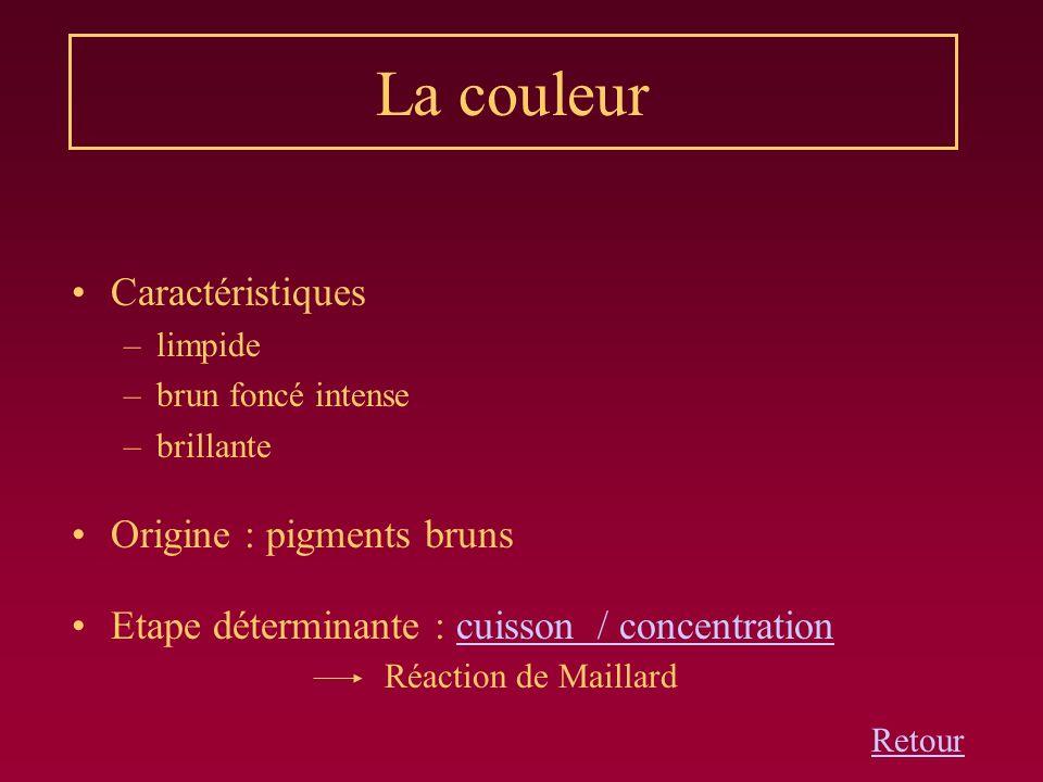 La couleur Caractéristiques Origine : pigments bruns