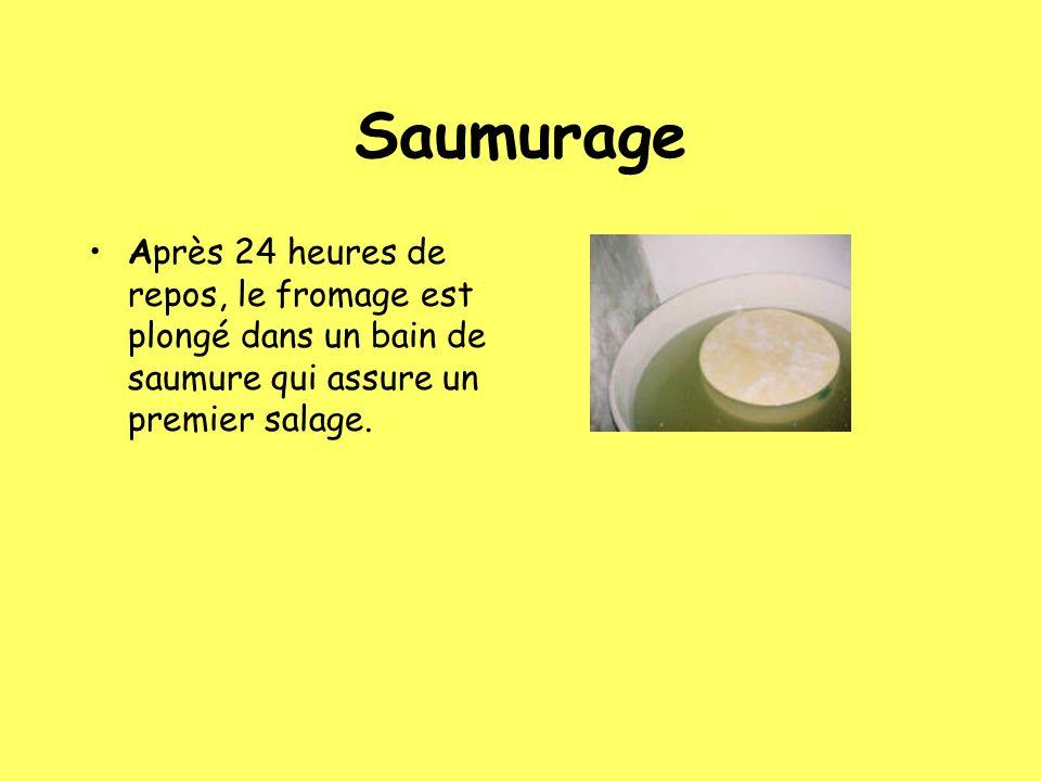 Saumurage Après 24 heures de repos, le fromage est plongé dans un bain de saumure qui assure un premier salage.