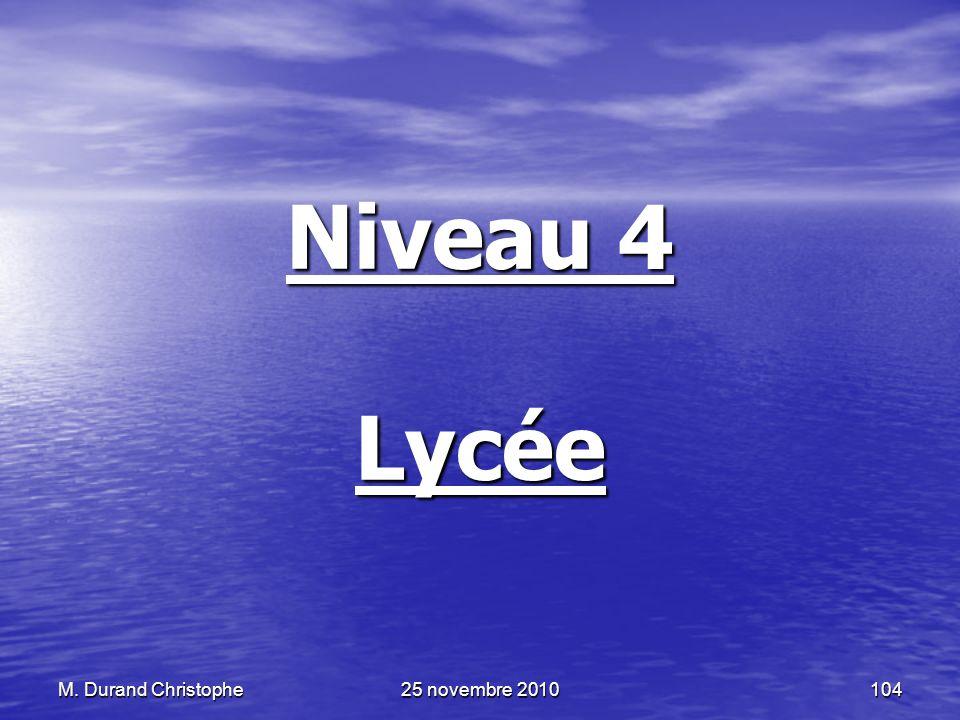 Niveau 4 Lycée M. Durand Christophe 25 novembre 2010