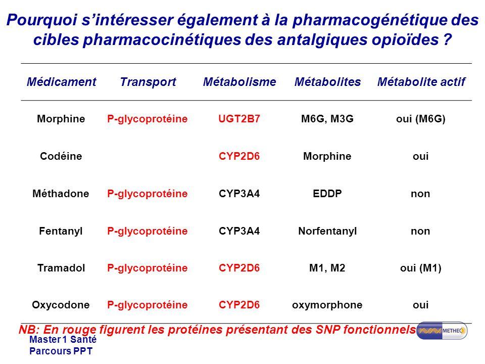 Pourquoi s'intéresser également à la pharmacogénétique des cibles pharmacocinétiques des antalgiques opioïdes
