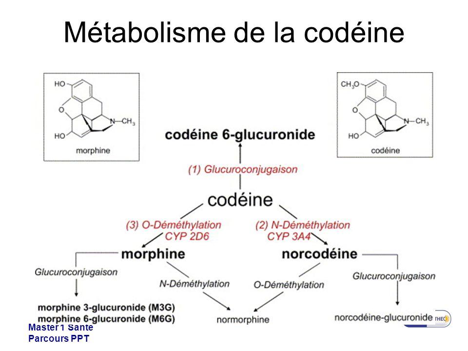 Métabolisme de la codéine