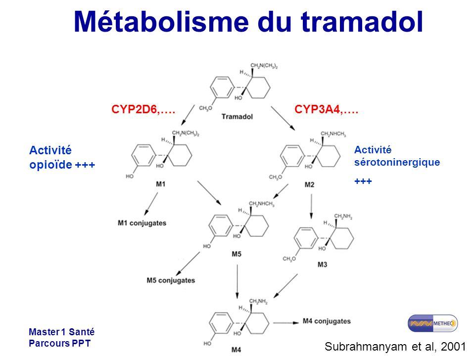 Métabolisme du tramadol