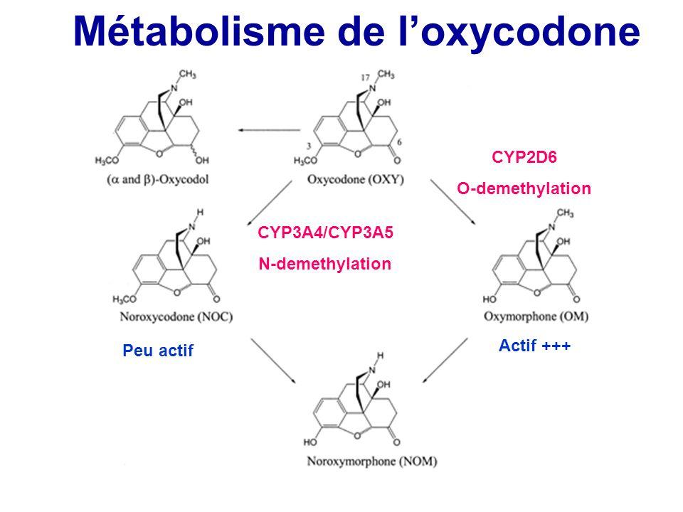 Métabolisme de l'oxycodone