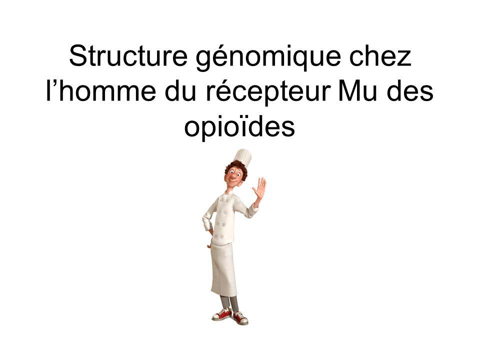 Structure génomique chez l'homme du récepteur Mu des opioïdes