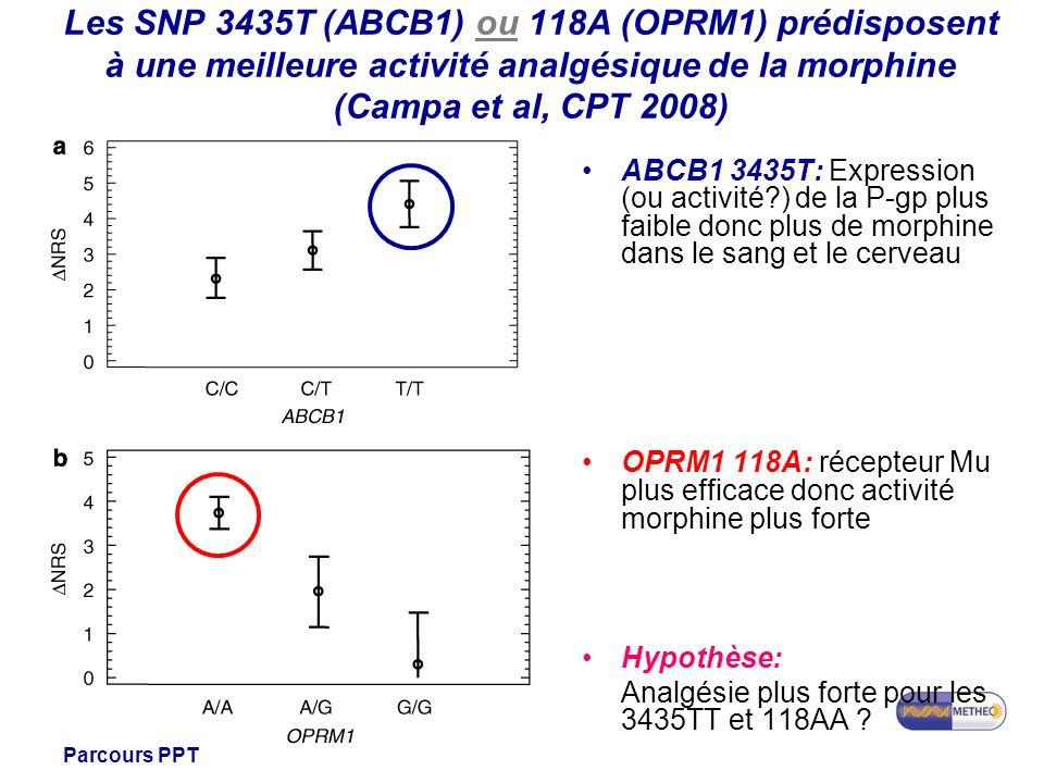 Les SNP 3435T (ABCB1) ou 118A (OPRM1) prédisposent à une meilleure activité analgésique de la morphine (Campa et al, CPT 2008)