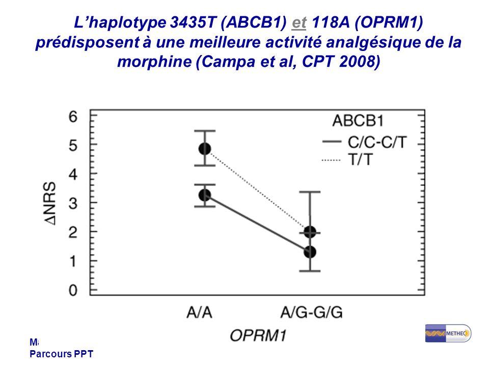 L'haplotype 3435T (ABCB1) et 118A (OPRM1) prédisposent à une meilleure activité analgésique de la morphine (Campa et al, CPT 2008)