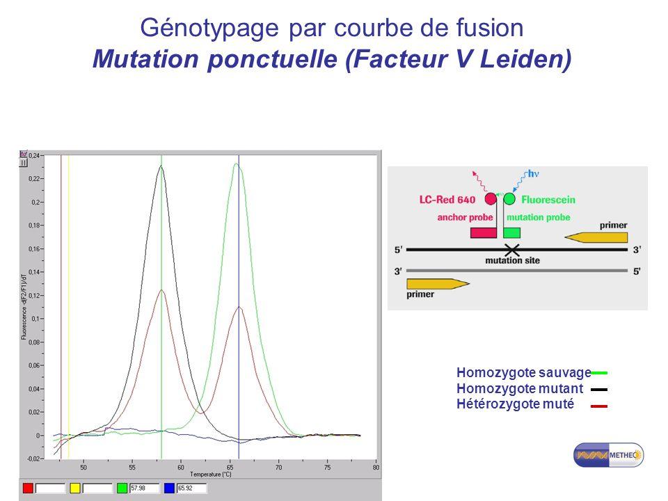 Génotypage par courbe de fusion Mutation ponctuelle (Facteur V Leiden)