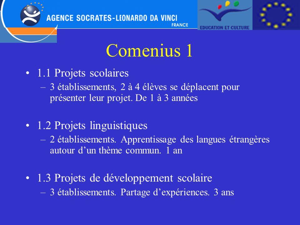 Comenius 1 1.1 Projets scolaires 1.2 Projets linguistiques