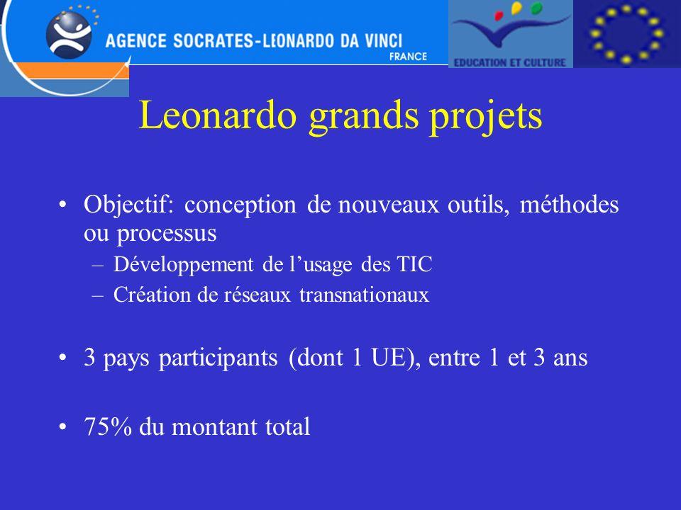 Leonardo grands projets
