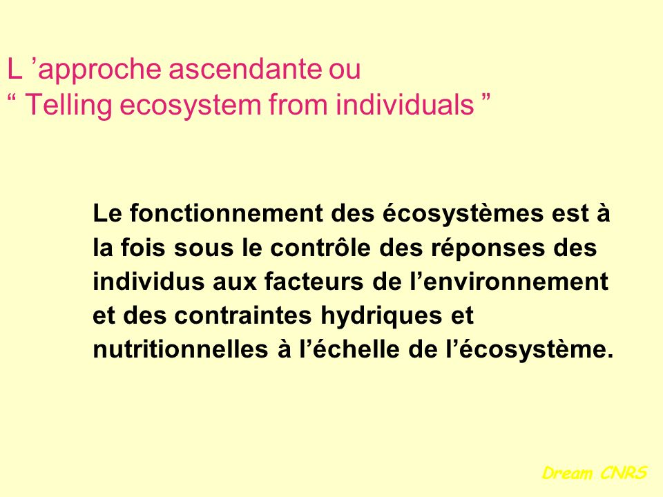L 'approche ascendante ou Telling ecosystem from individuals
