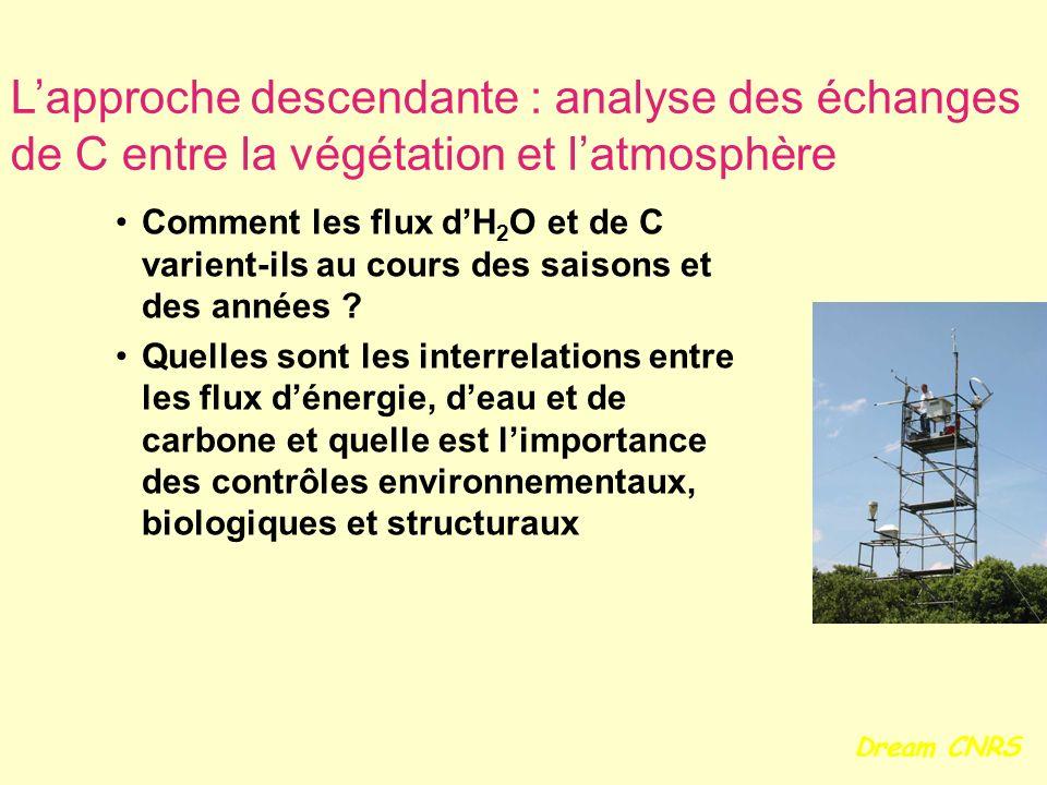 L'approche descendante : analyse des échanges de C entre la végétation et l'atmosphère