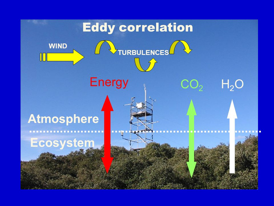 Eddy correlation H2O Atmosphere Energy CO2 Ecosystem TURBULENCES WIND